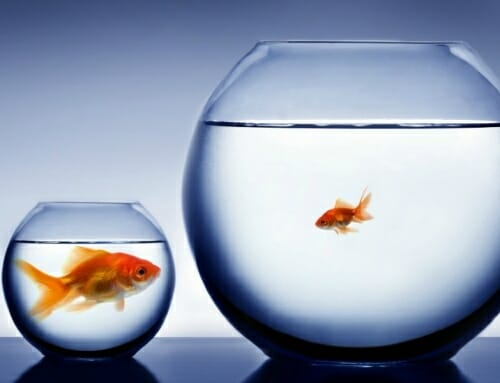 Is your business growing too fast and you are struggling to keep up?